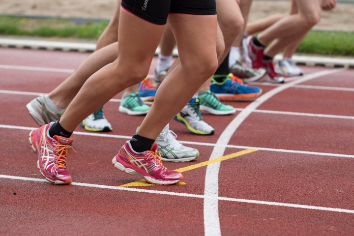 Activitats esportives i dirigides pel proper curs