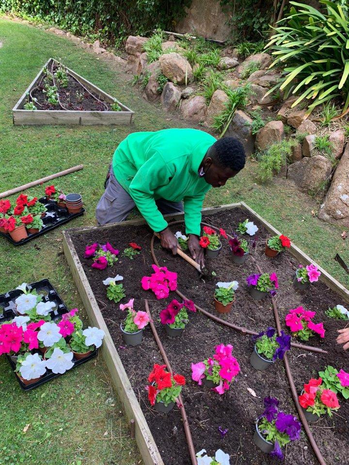PTT d'Auxiliar de vivers i jardins