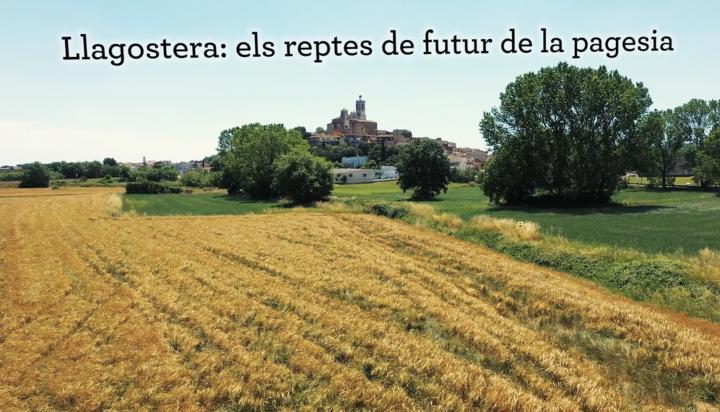 Documental Llagostera, reptes de futur de la pagesia