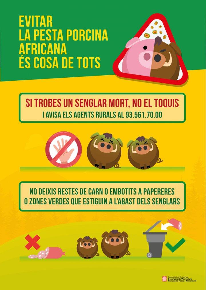 Prevenir la pesta porcina és cosa de tots
