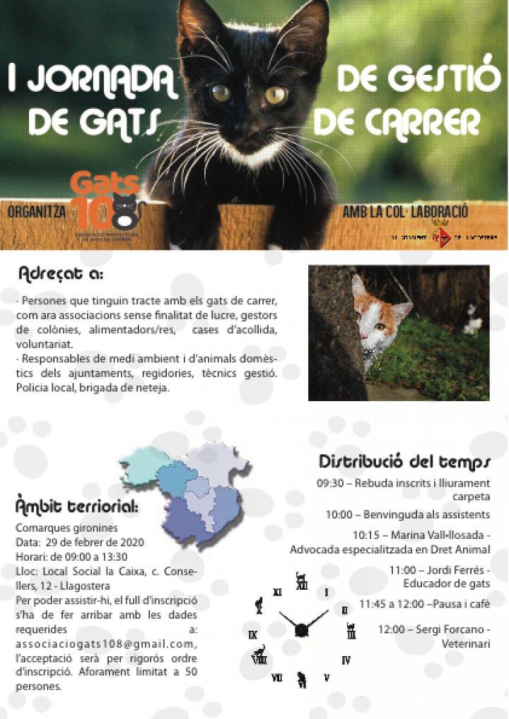 I Jornada de gestió de gats de carrer