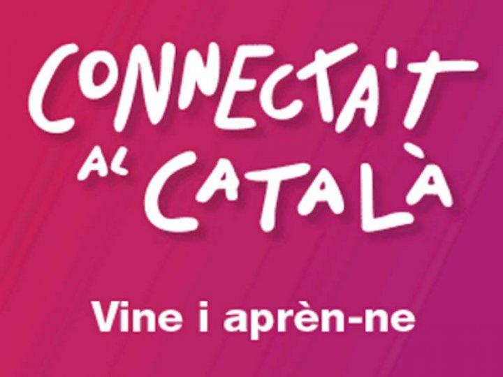 Inscripcions als cursos de català