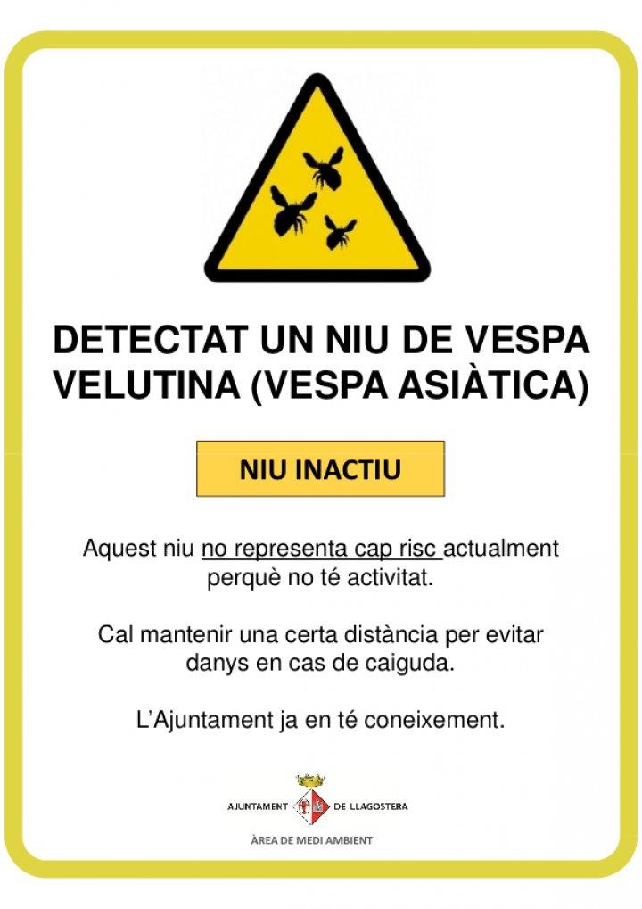 Senyalització de dos punts on s'han observat nius de Vespa velutina (asiàtica)