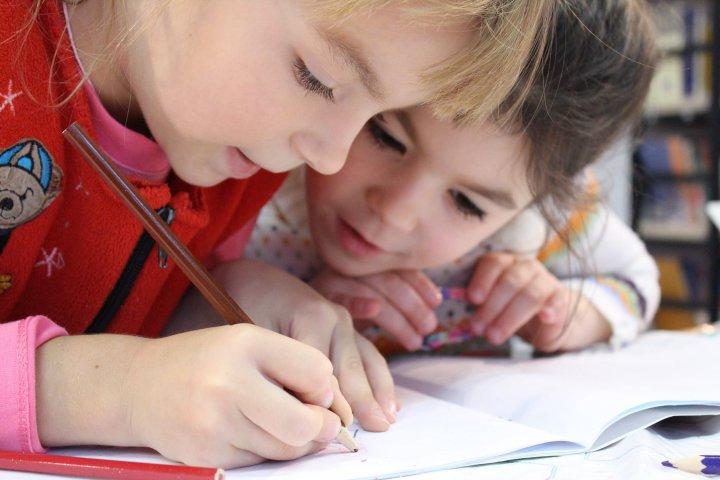 Noves propostes educatives i lúdiques per a infants, joves i famílies